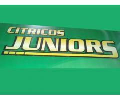 CITRICOS JUNIOR´S